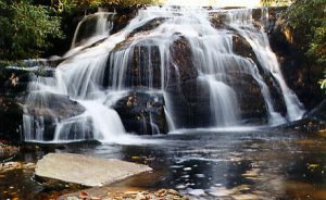 Waterfalls 'n Wine @ Pisgah Field School  | Nebo | North Carolina | United States