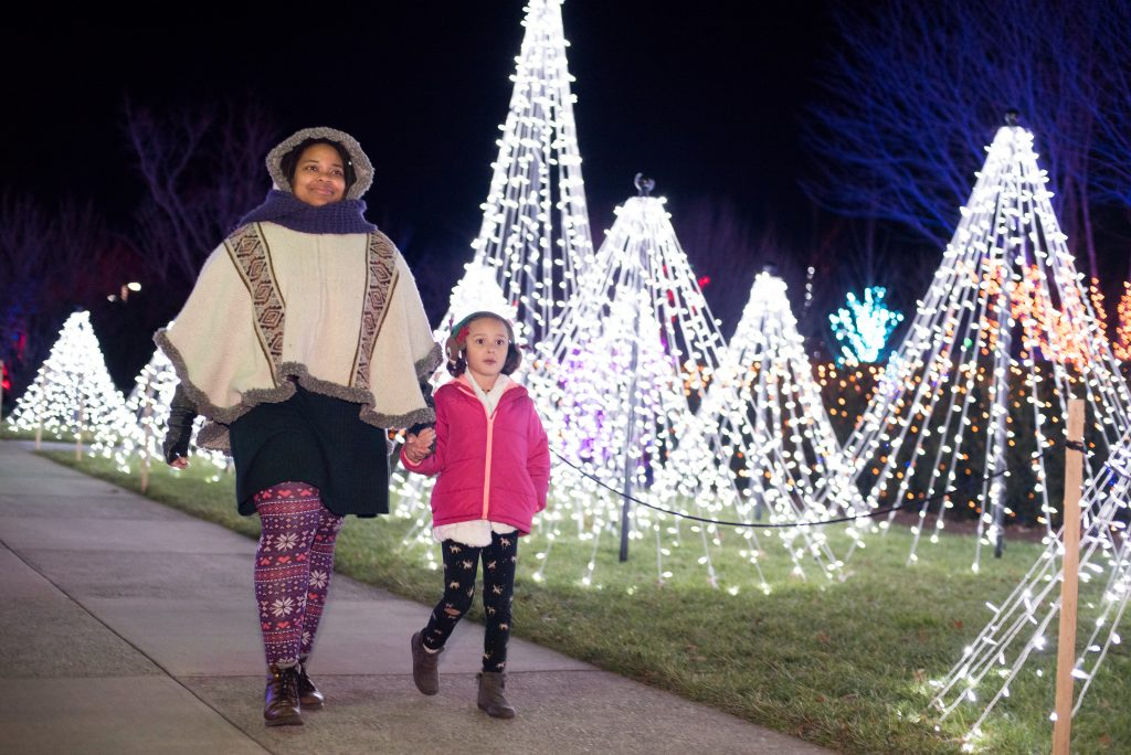 Hendersonville Nc Christmas Events 2020 Winter Lights at The N.C. Arboretum   Visitors Information Center