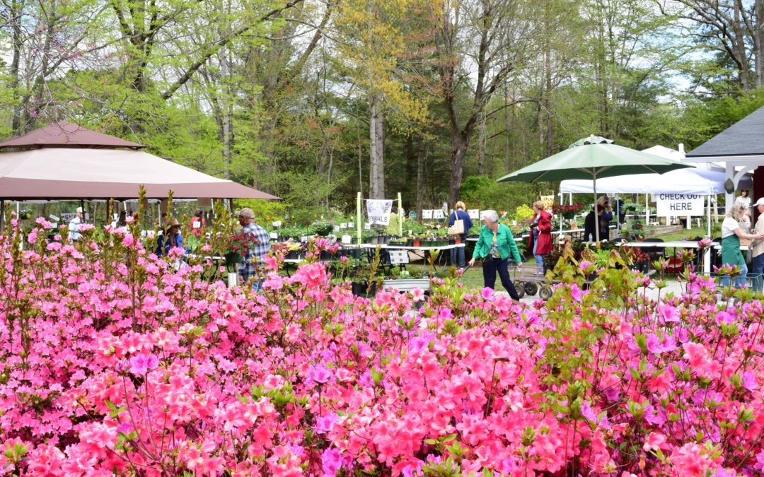 May Plant Sale
