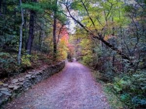 Scenic Tours & Hikes | Visitors Information Center