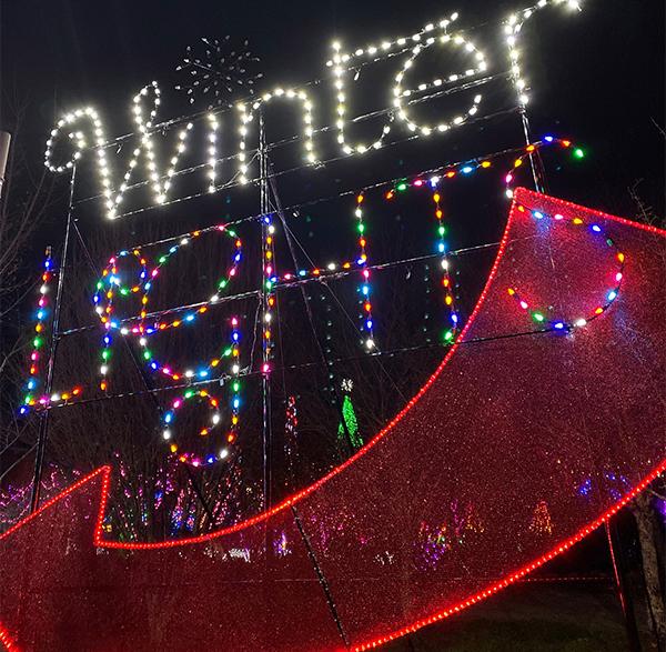 Winter Lights at the N.C. Arboretum